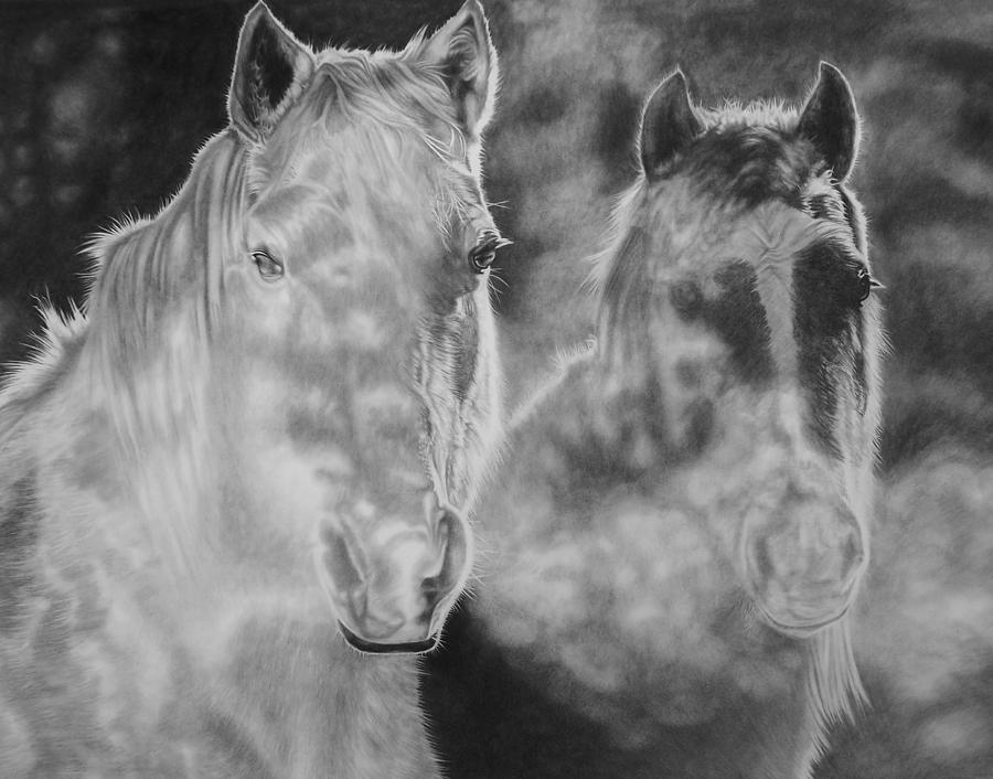 Horses Drawing - Mist by Glen Powell