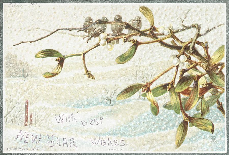 Greetings Painting - Mistletoe In The Snow by English School