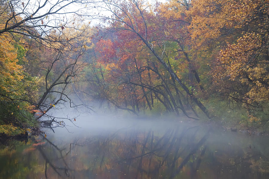 Mist Photograph - Mists Of Time by Bill Cannon