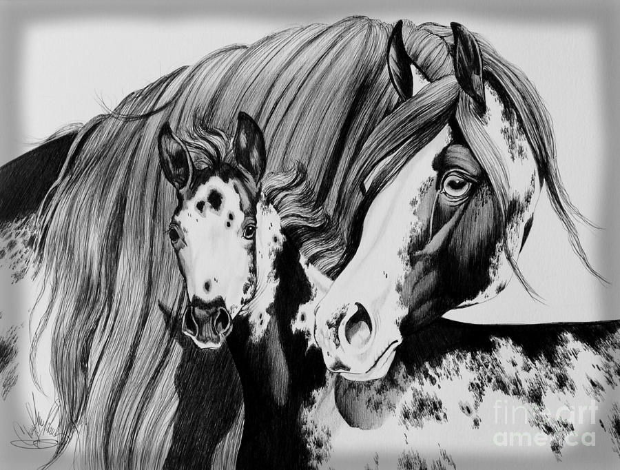 Paint Horses Drawing - Misty And Jet by Cheryl Poland