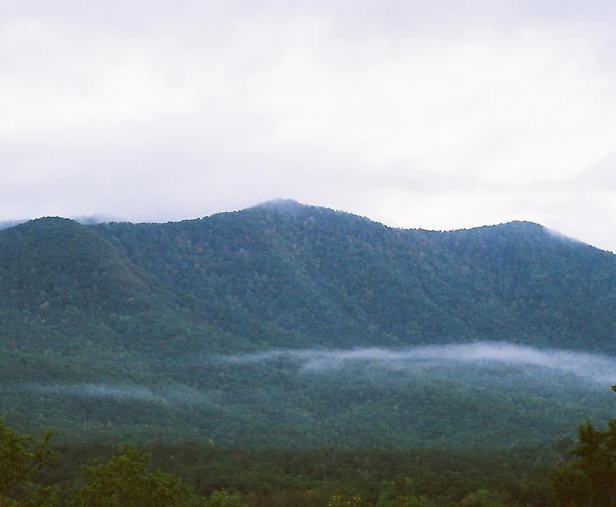 Mountain Mist Photograph - Misty by Cynthia Syracuse