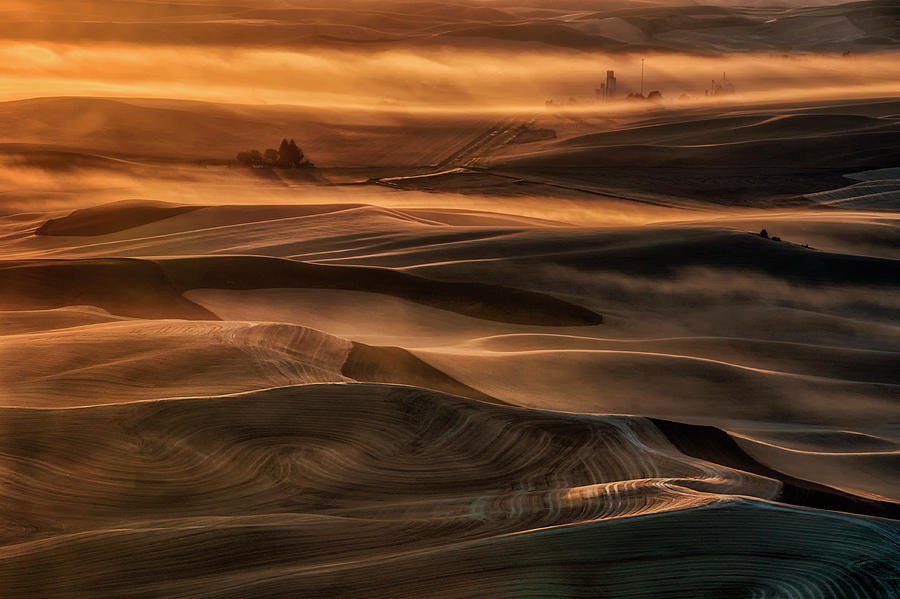 Palouse Photograph - Misty Farmland by Lydia Jacobs