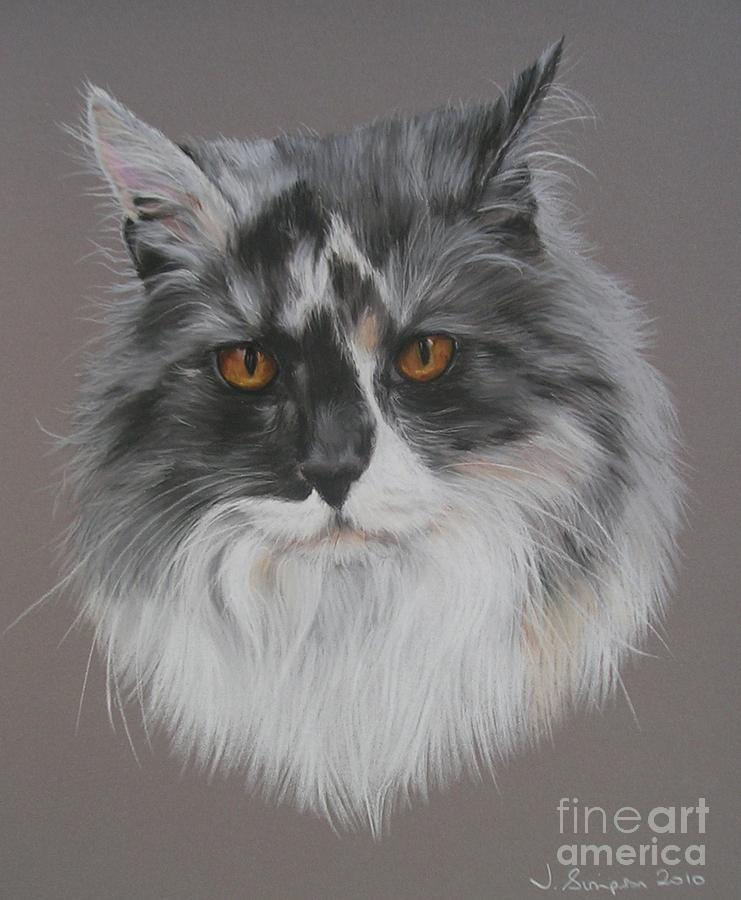 Pastel Pet Portrait Pastel - Misty by Joanne Simpson