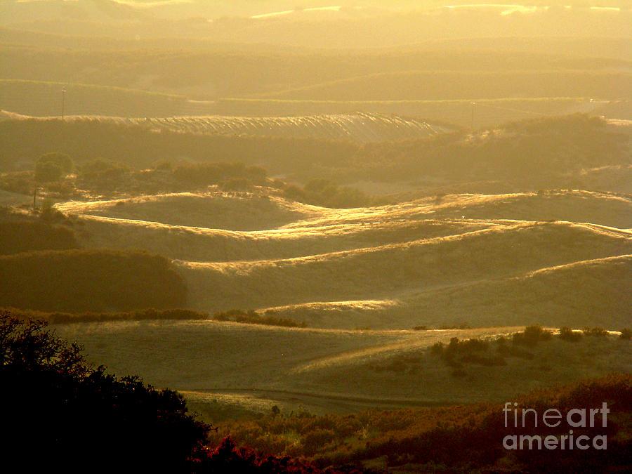Landscape Photograph - Misty Landscape by Eva Kato