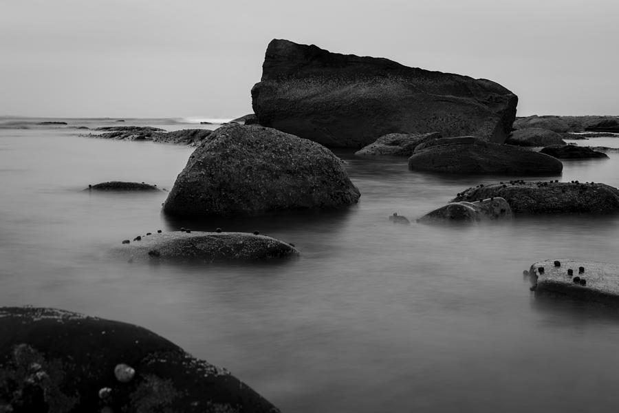 Misty Morning Photograph - Misty Morning by Andrew Pacheco