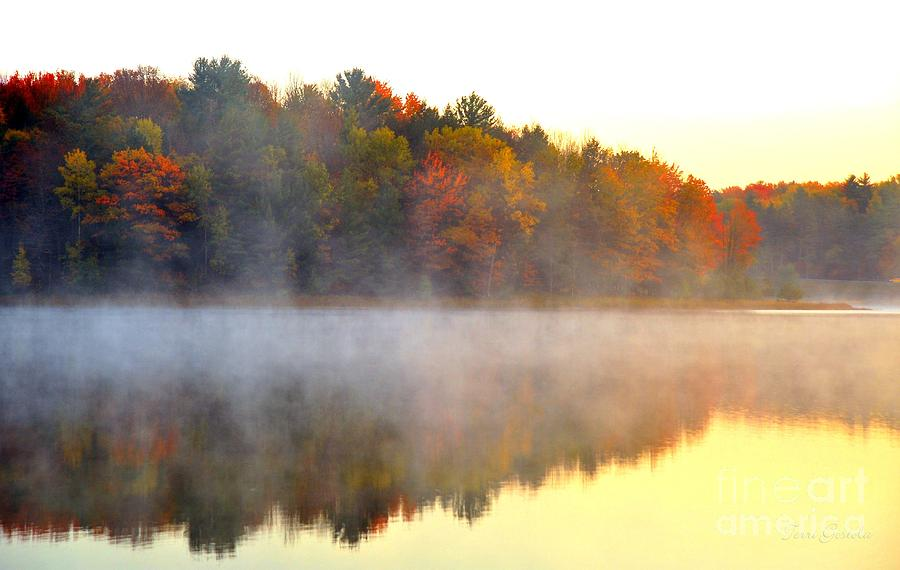 Michigan Photograph - Misty Morning At Stoneledge Lake by Terri Gostola