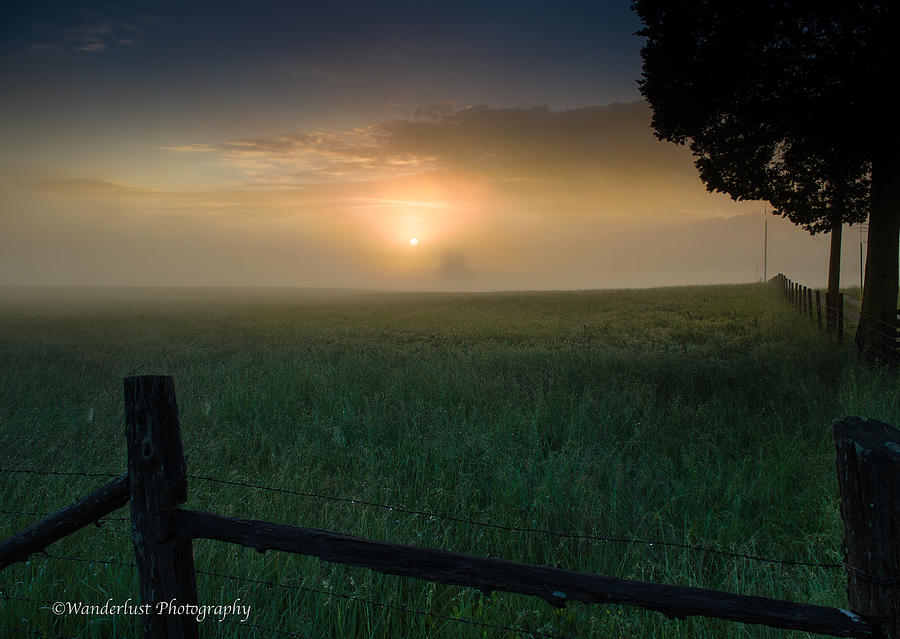 Farm Photograph - Misty Morning Hop by Paul Herrmann