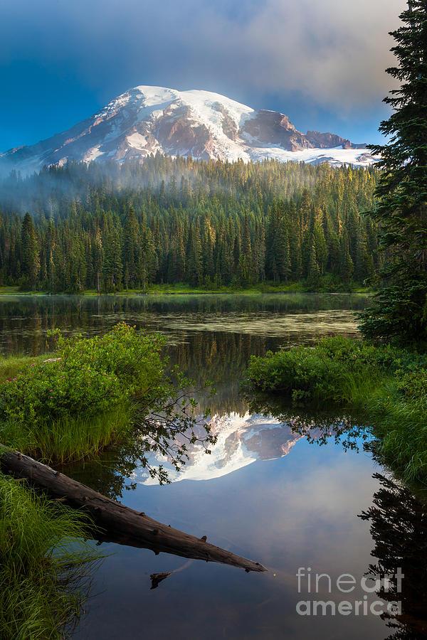 America Photograph - Misty Rainier Dawn by Inge Johnsson