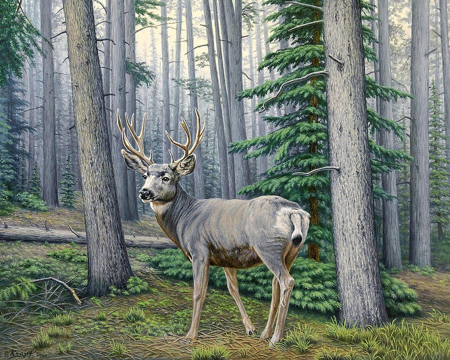 Wildlife Painting - Misty Woods-buck by Paul Krapf