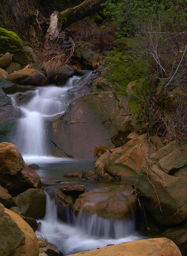 Waterfall Photograph - Mix Canyon Creek by Bill Gallagher