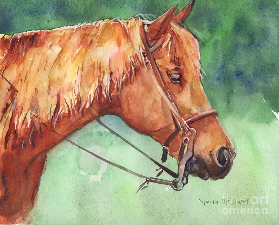 Horse Watercolor Painting - Horse watercolor named Mo by Maria Reichert