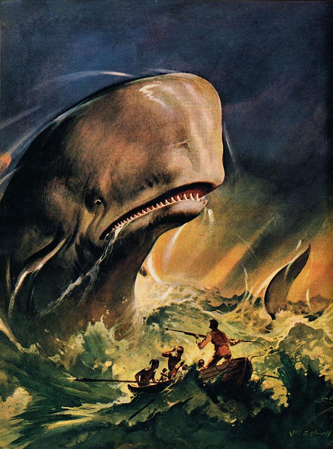 Moby Dick Painting - Moby Dick by James Edwin McConnell