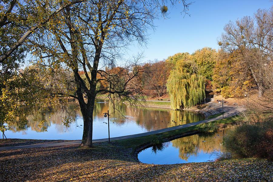 Pond Photograph - Moczydlo Park In Warsaw by Artur Bogacki