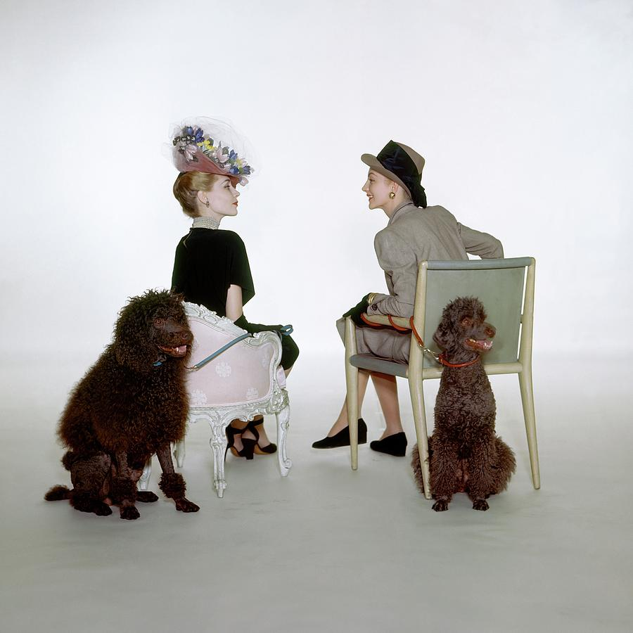Models Sitting With Poodles Photograph by John Rawlings
