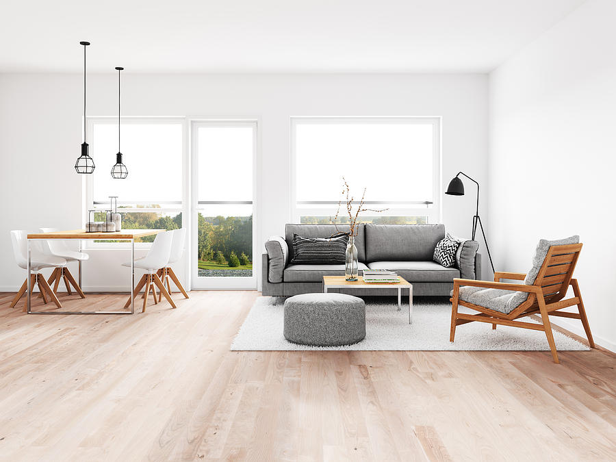 Modern living room with dining room Photograph by NelleG