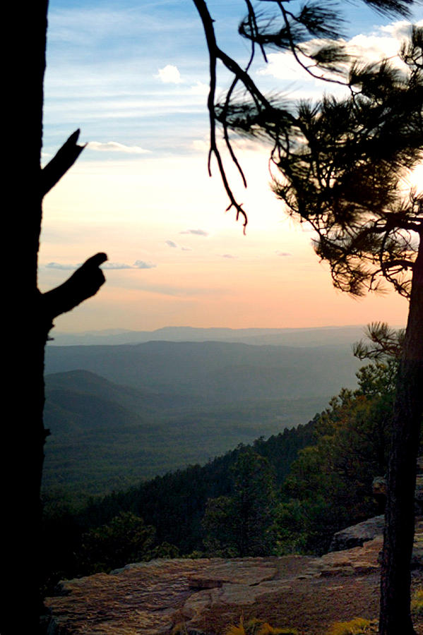 Mogollon Rim 27323 Photograph
