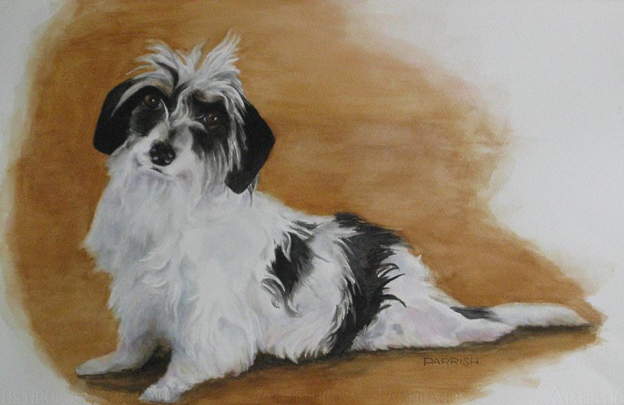 Dog Painting - Mojo by Parrish Hirasaki