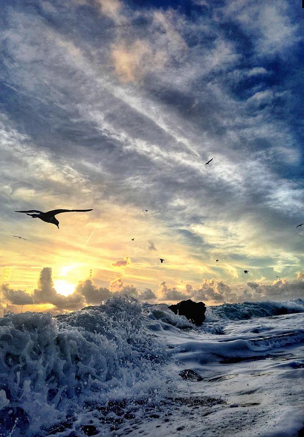 Ocean Photograph - Mojo Risin by Andrew Royston