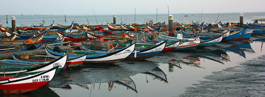 Boat Photograph - Moliceiros Da Torreira II by Dave Dos Santos