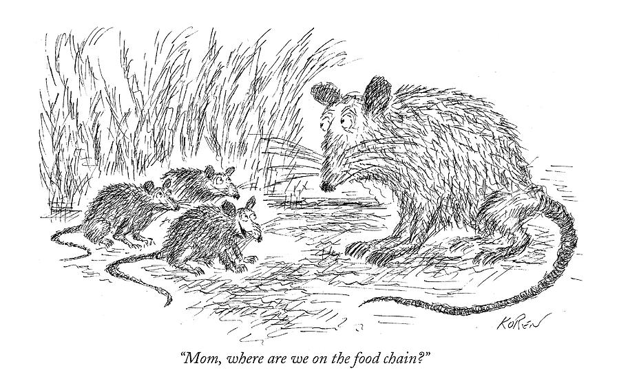 Mom, Where Are We On The Food Chain? Drawing by Edward Koren
