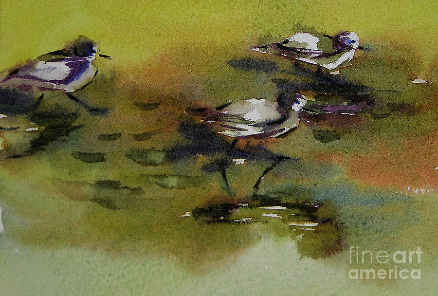 Monday evening sandpipers  by Julianne Felton