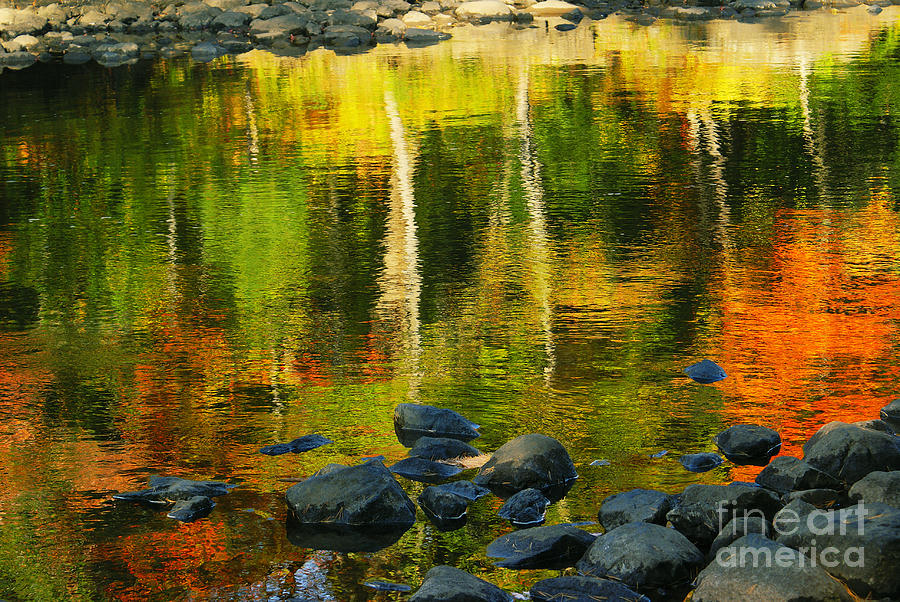 Water Reflection Photograph - Monet Autumnal 02 by Aimelle