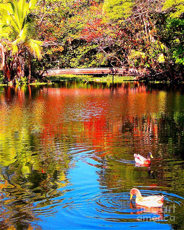 Monet Photograph - Monets Garden In Hawaii 2 by Jerome Stumphauzer