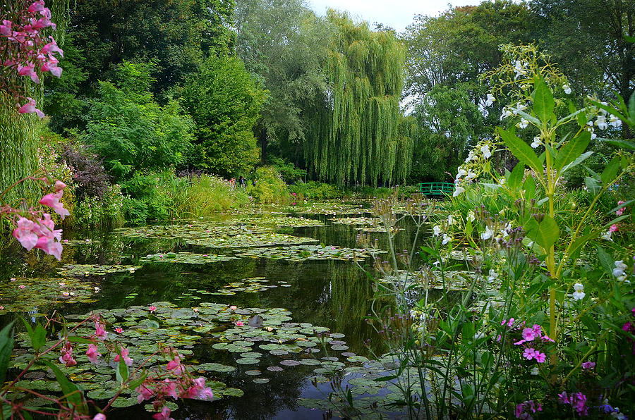 Claude Monet Photograph - Monets Pond With Waterlilies And Bridge by Carla Parris
