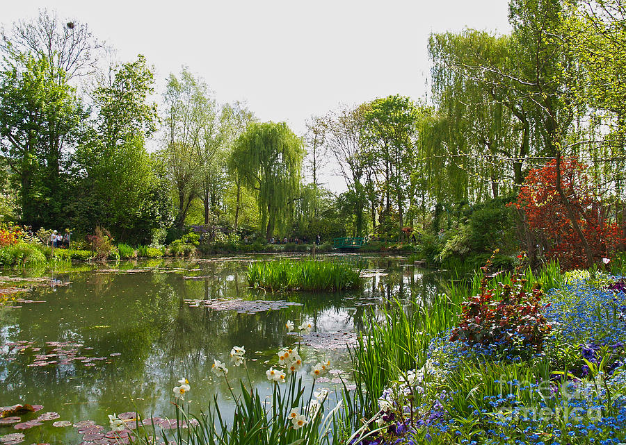 Landscape Photograph - Monets Water Garden At Giverny by Alex Cassels