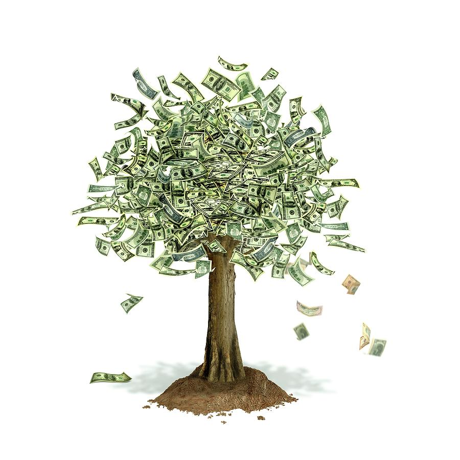 Money Tree, Conceptual Artwork by Leonello Calvetti