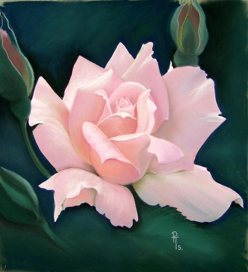 Pink Rose Pastel - Monique by Rosemarie Temple-Smith