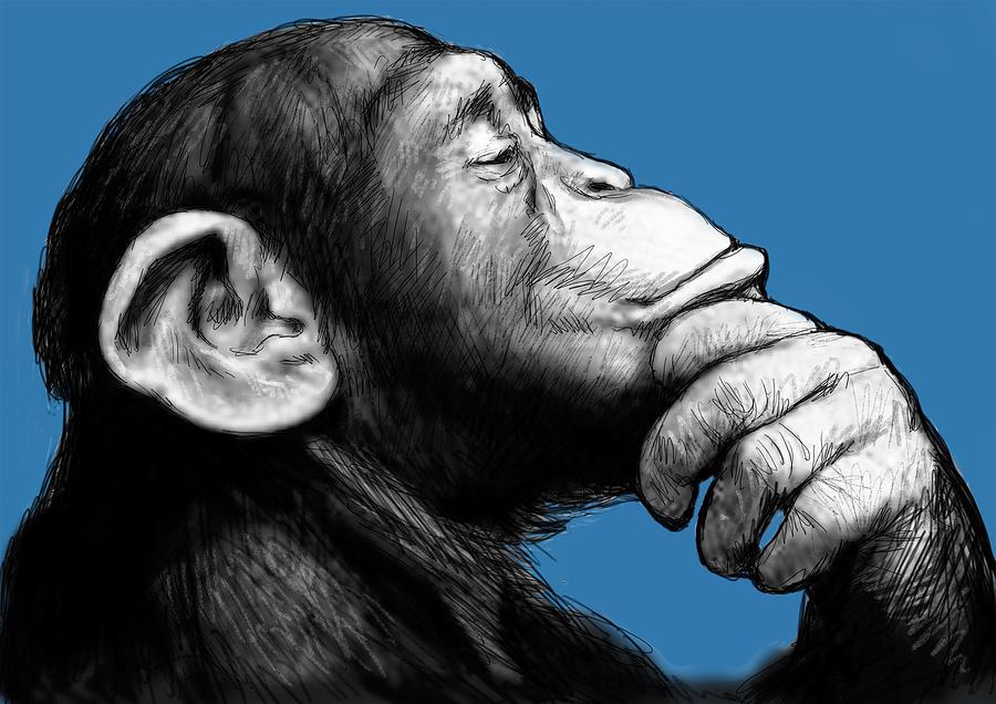 Portraits Painting - Monkey Pop Art Drawing Sketch by Kim Wang