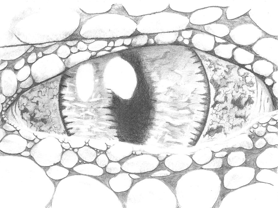 how to draw a crocodile eye
