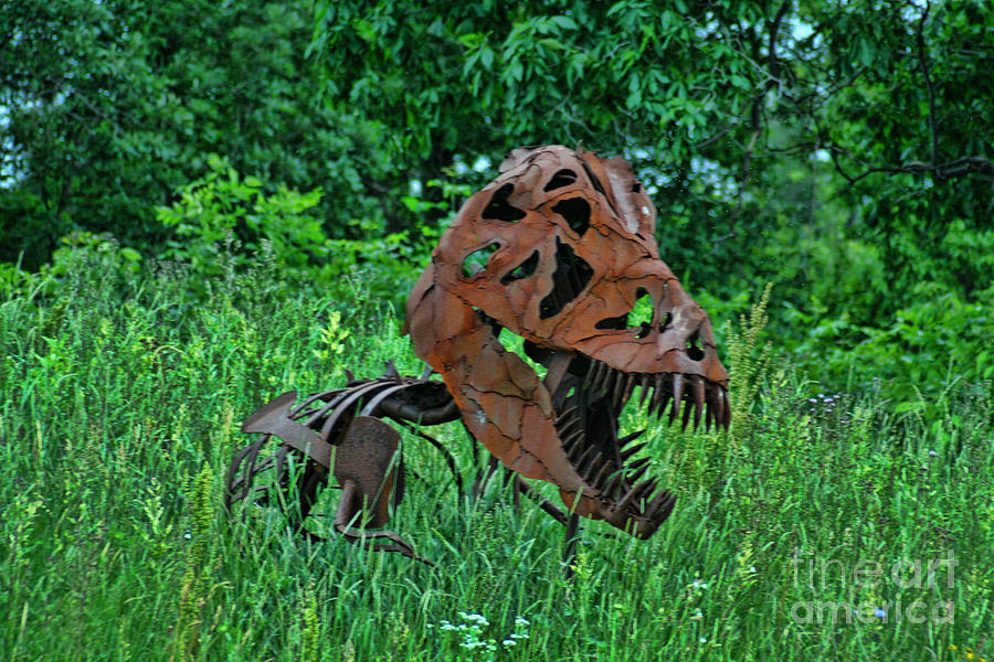 Door County Photograph - Monster In The Grass by Tommy Anderson