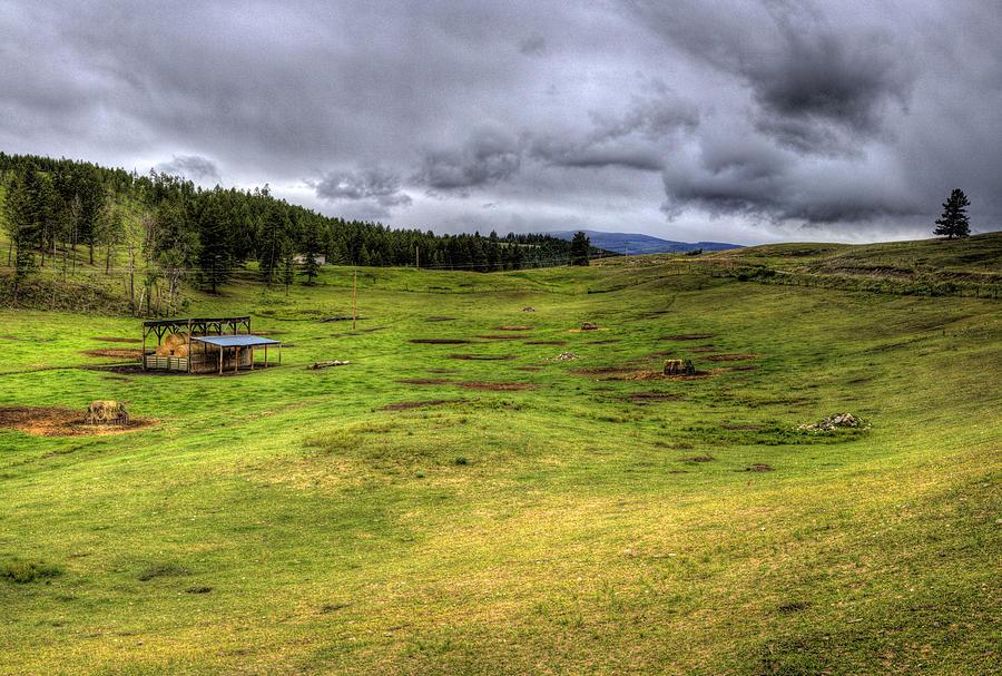 Eureka Photograph - Montana Breeding Ground by Lee Santa
