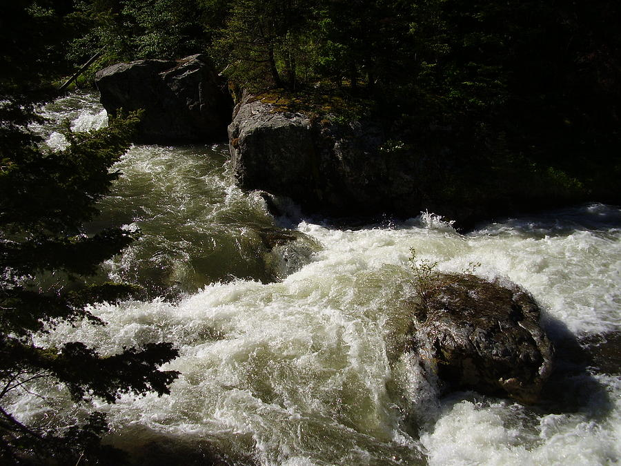 River Photograph - Montana River Rapids by Yvette Pichette