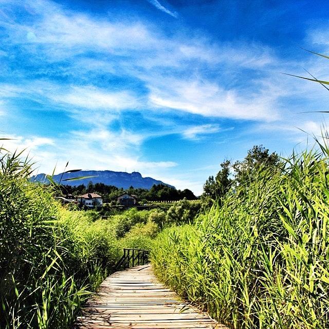 Paesaggio Photograph - #monticolo #altoadige #südtirol by Luisa Azzolini
