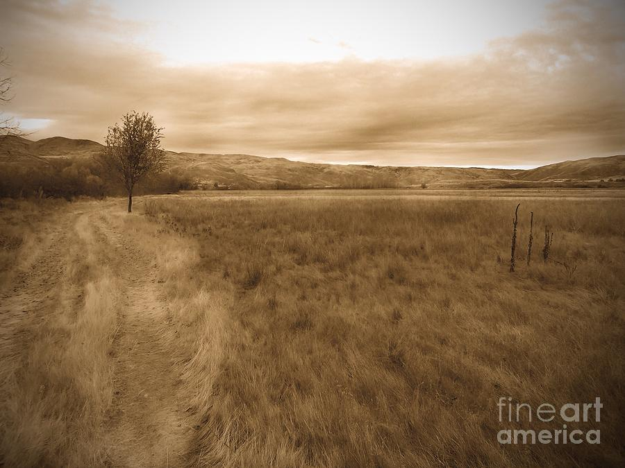 Landscape Photograph - Montour by Kimberly Maiden