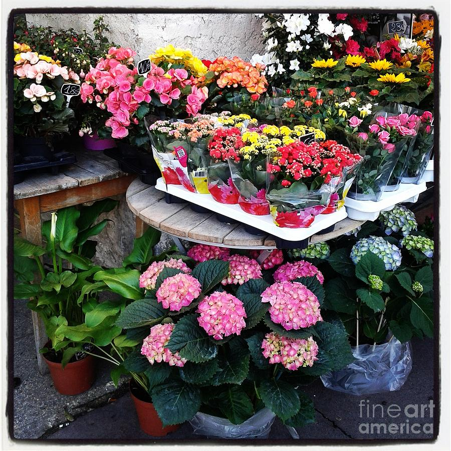 Print Photograph - Montpellier Flower Shop by Victoria Herrera