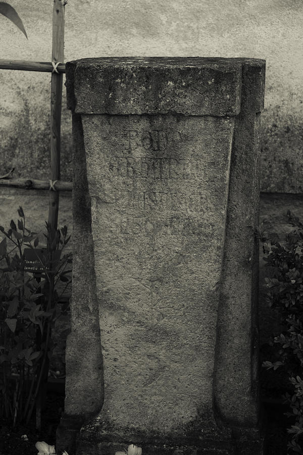 Monument In The Herb Garden Photograph