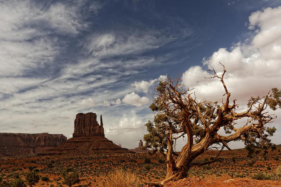 Monument Valley Horizon Photograph