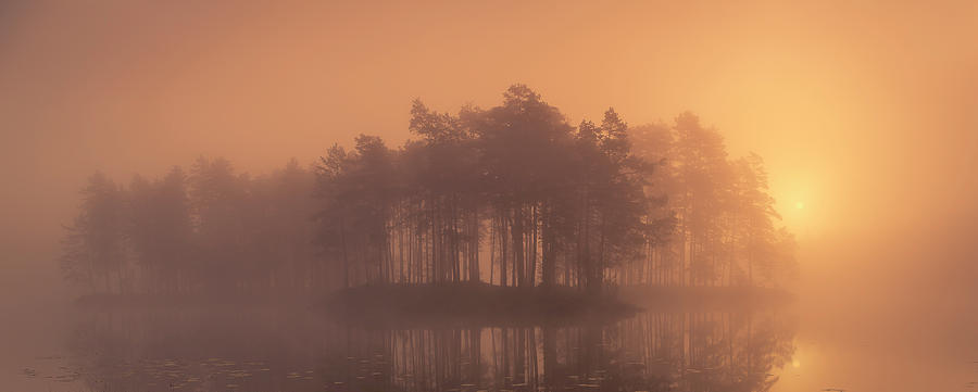 Mist Photograph - Moody by Andreas Christensen