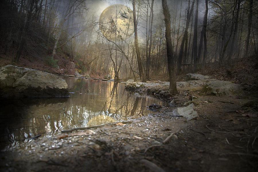 Full Photograph - Moon Camp by Betsy Knapp
