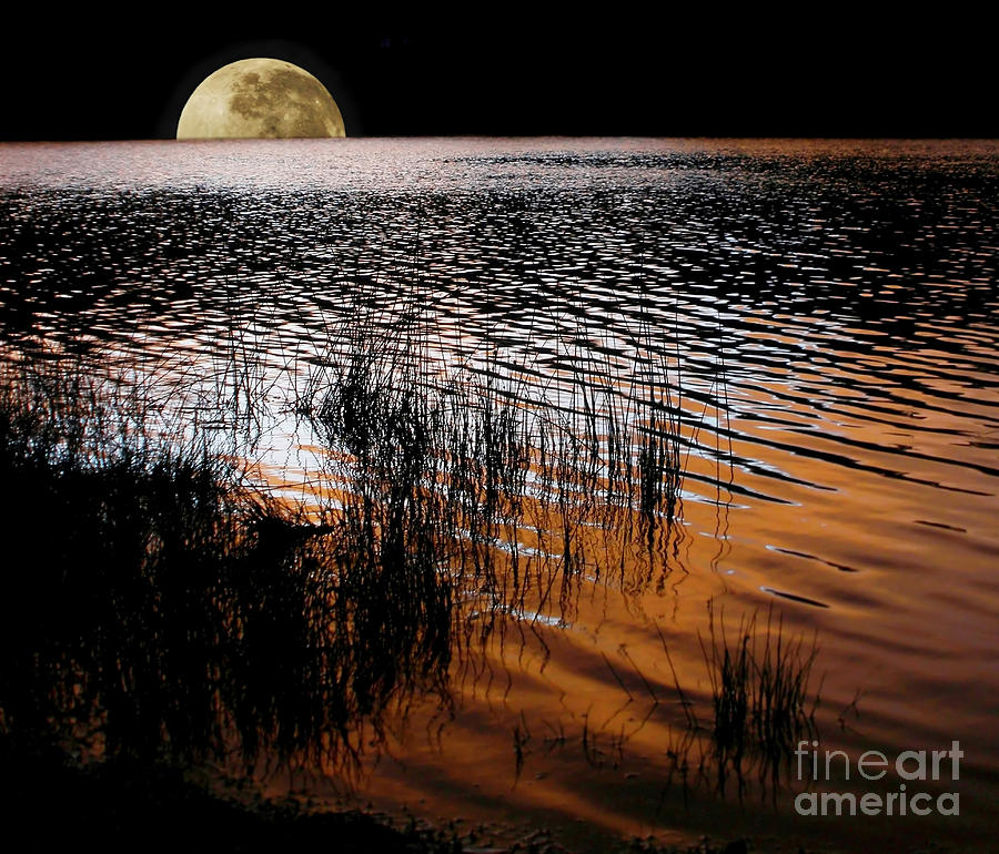 Photography Photograph - Moon Catching A Glimpse Of Sunset by Kaye Menner