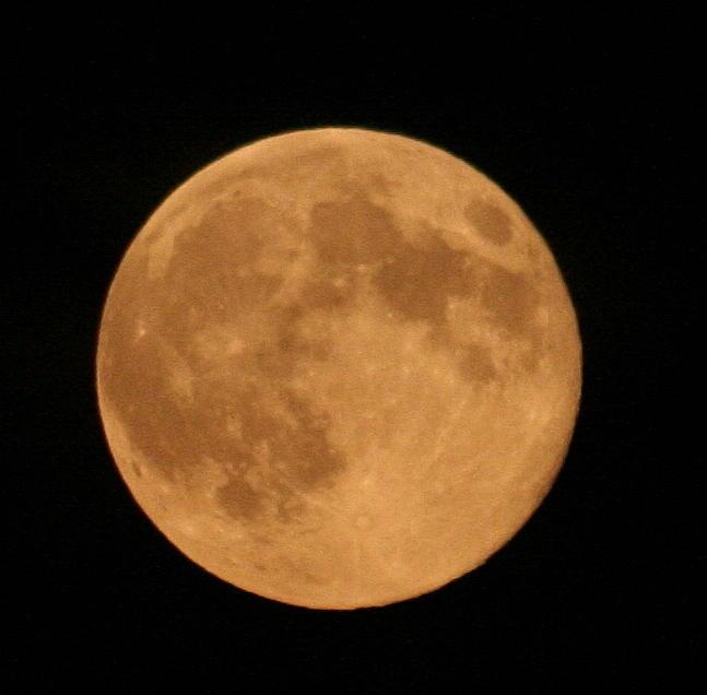 Moon Photograph - Moon Closeup by Dr Carolyn Reinhart