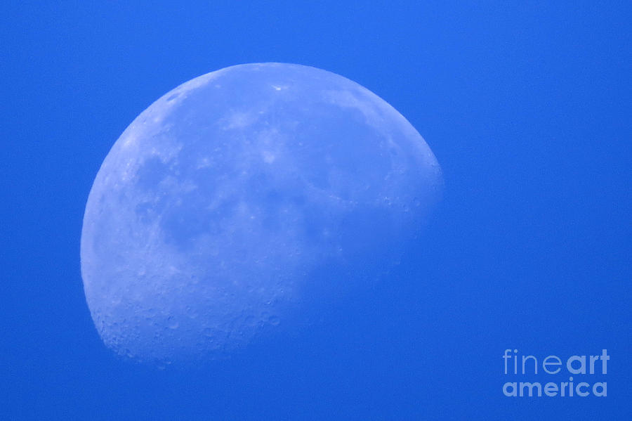 Moon Photograph - Moon Craters by Mary Mikawoz