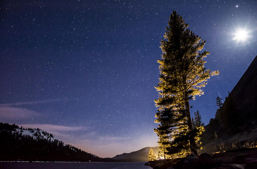 Night Photograph - Moon Light Over Tenaya Lake by Cat Connor