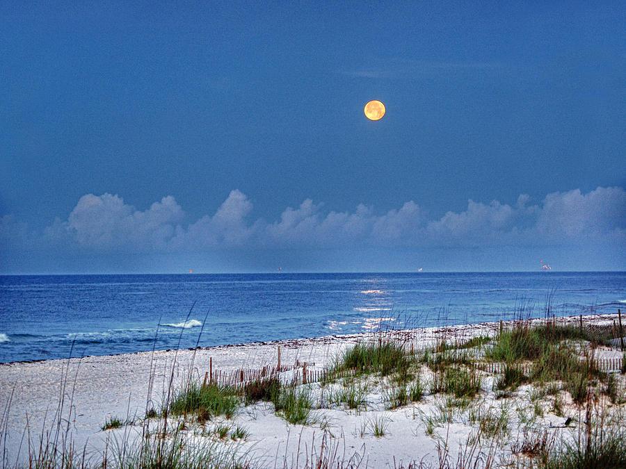 Pelican Digital Art - Moon Over Beach by Michael Thomas
