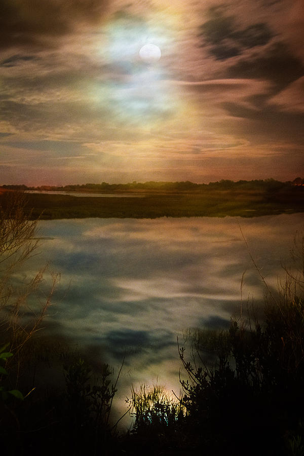 Nature Photograph - Moon Over Marsh - 35mm Film by Gary Heller