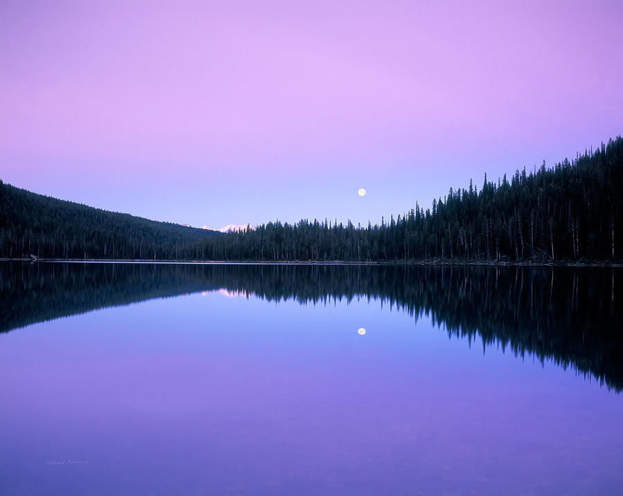 Azure Photograph - Moon Rise by Leland D Howard